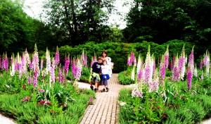 gardens in williamsburg virginia
